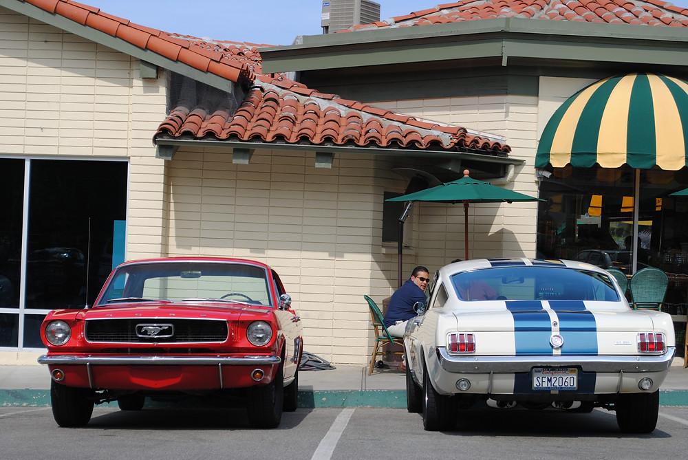 Two Mustangs.jpg