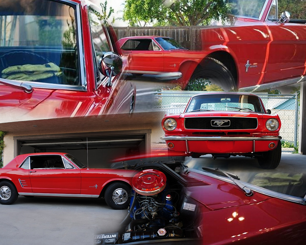 Patricks Mustang Collage.JPG