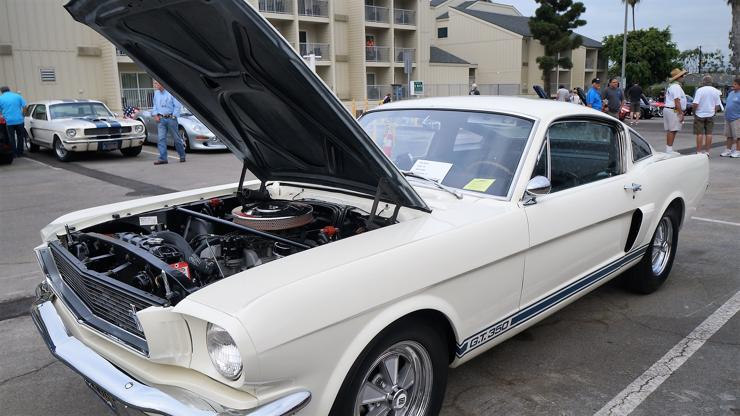 A Fine Example  Of The Shelby Marque
