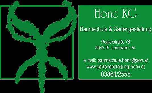 Honc_KG_weißgrün.png