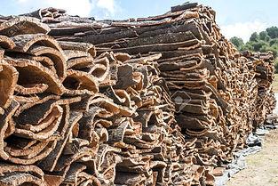 65190932-pile-of-bark-from-cork-tree.jpg
