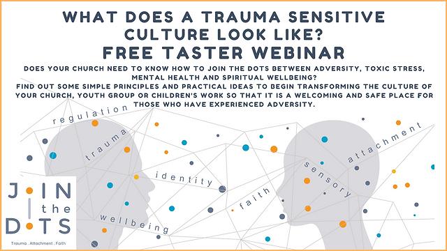 Taster webinar. What does a trauma sensitive culture look like? .png