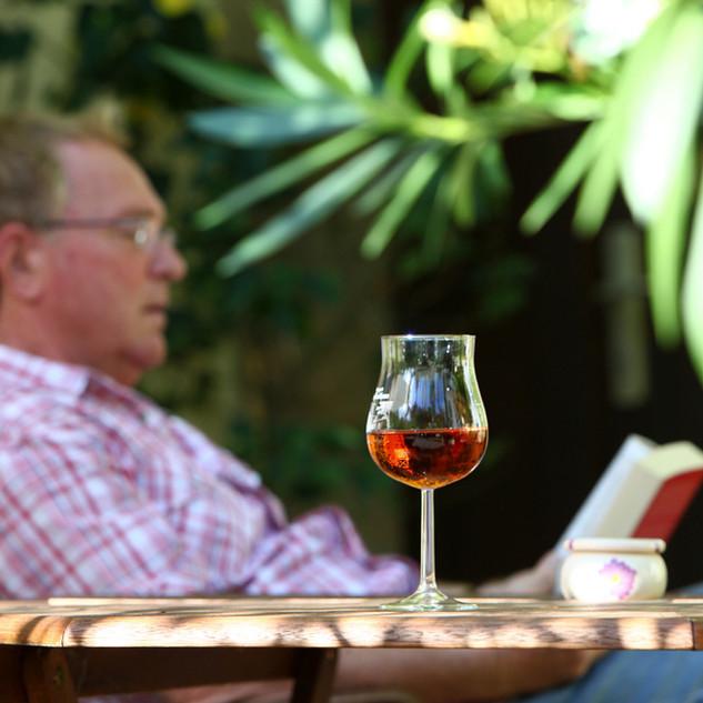 Ein_Buch-_ein_Gläschen_Wein.jpg