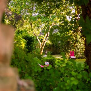 Blick in den Garten!.jpg
