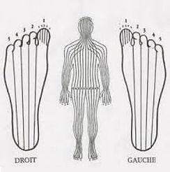 10-zones-du-corps-tracees-sur-les-pieds.