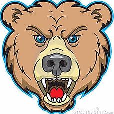 bearpic.jpg