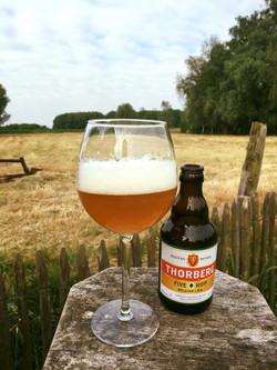 Thorberg belgische ipa zacht bitter en lekker fruitig