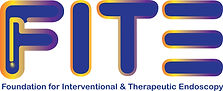 Foundation for Interventional and Therapeutic Endoscopy Logo
