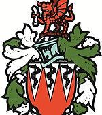 Cardiff Medicals RFC.jpeg