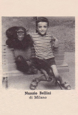 bellini_nunzio