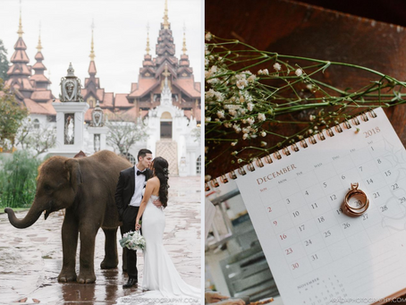 Tips for Including Animals in Your Wedding