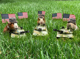 Memorial Day by piggies