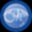 20_Ozonoterapiya.png