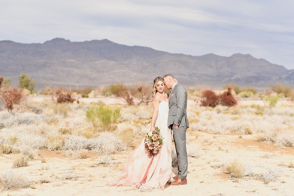 Indianapolis Lafayette Indiana Wedding Photographer Photography