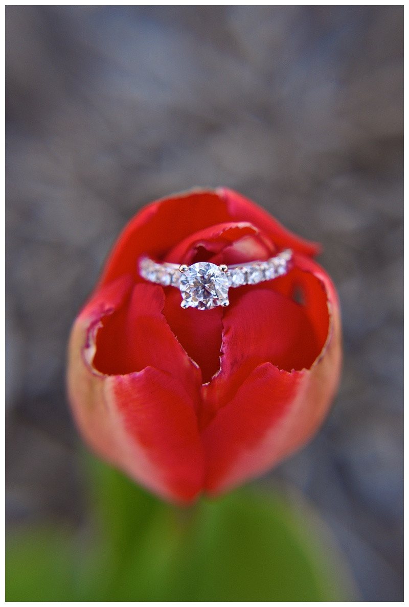 5 Tips For Getting The Perfect Ring Shot For Photographers Indiana Wedding Engagement Photographer Photography