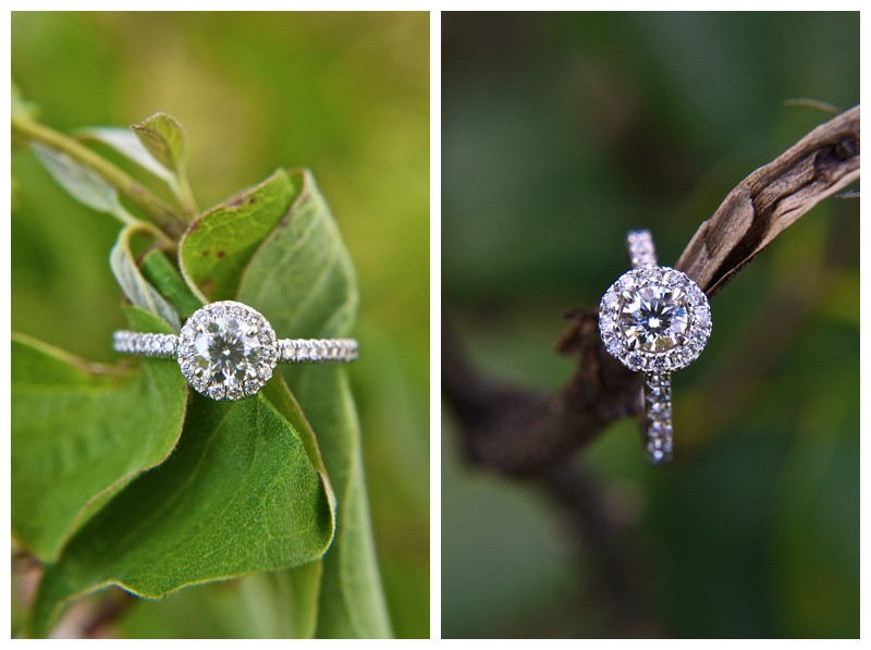 Engagement Ring Inspiration Indiana Wedding Photographer Photography Lafayette Indianapolis