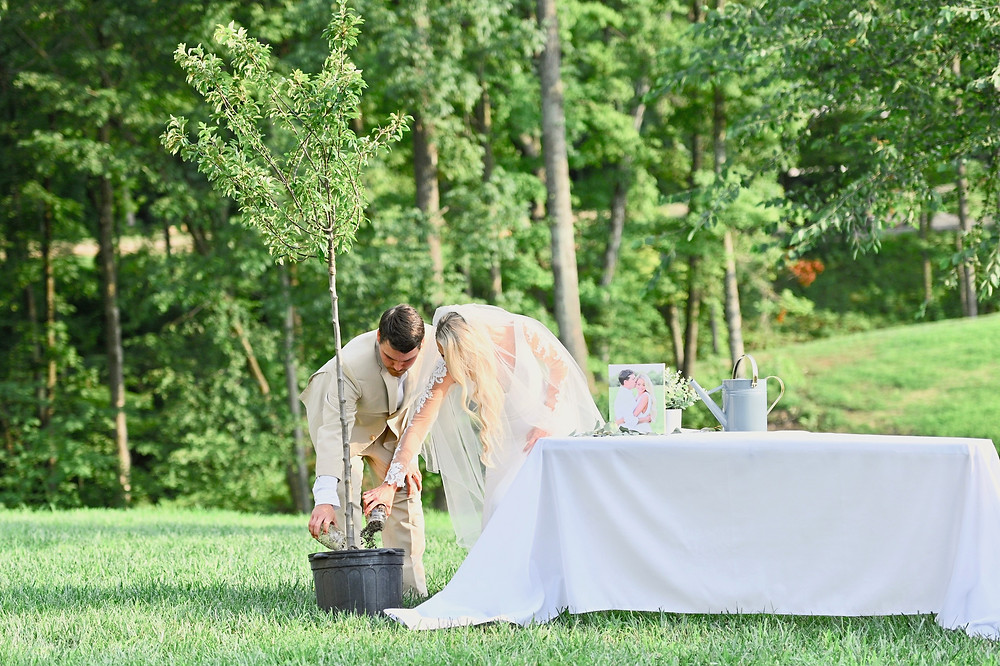 Tree Planting Indiana Wedding Photographer Photography