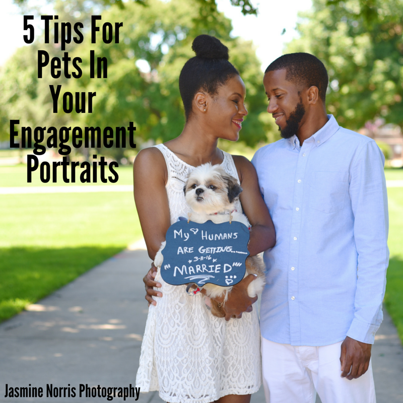 Indiana Engagement Photographer Photography 5 Tips For Pets In Your Engagement Portraits
