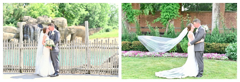 Indianapolis Zoo Indianapolis Indiana Wedding Photographer Photography