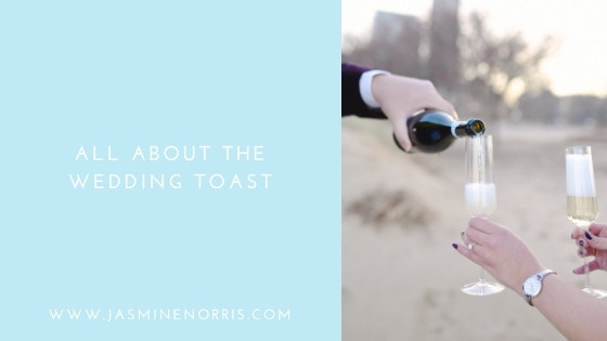 All About The Wedding Toast Indiana Wedding Photographer Photography