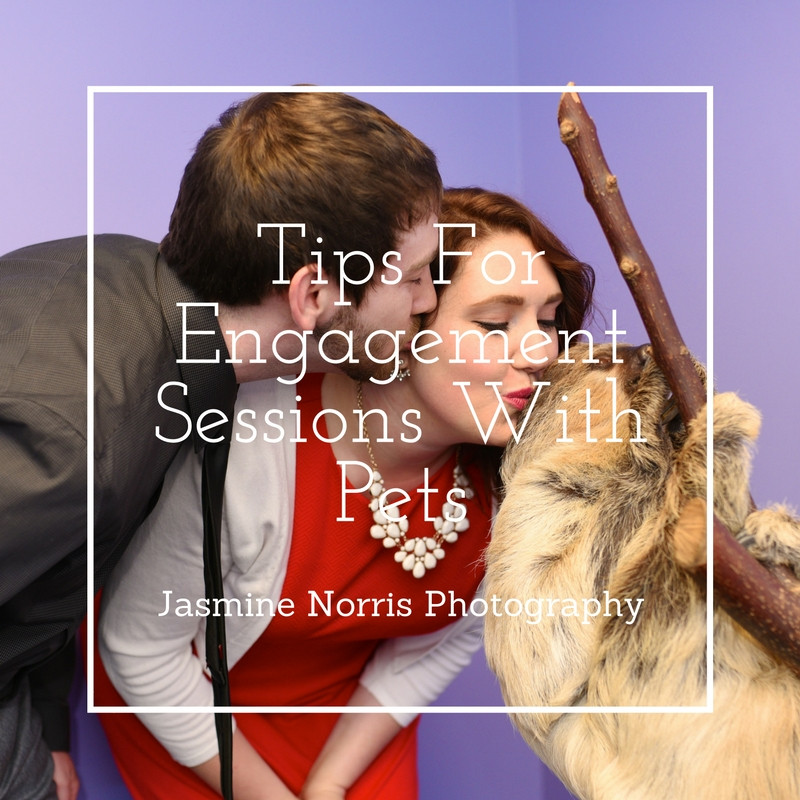 Tips For Engagement Sessions With Pets Indiana Wedding Photographer