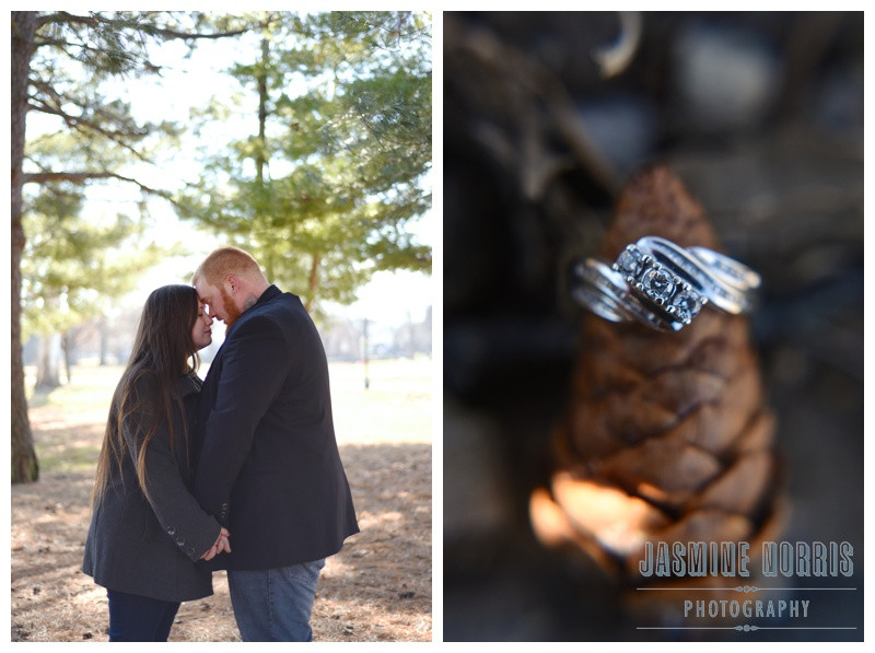 Garfield Park Indianapolis Indiana Engagement