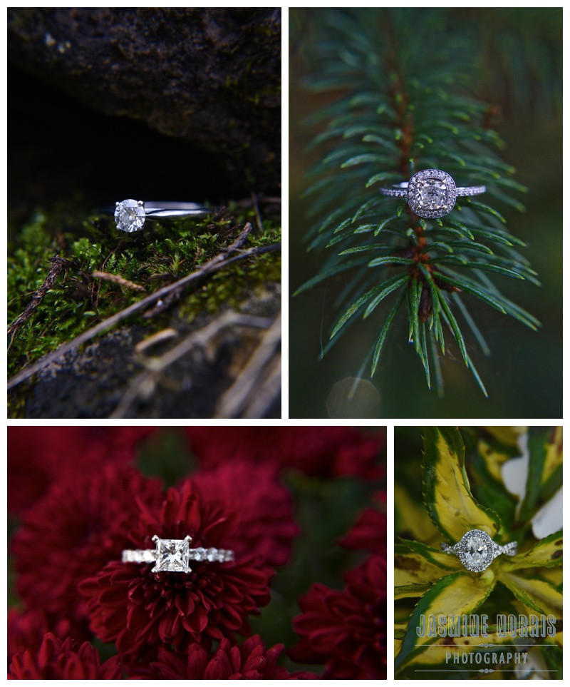 Indiana Wedding Engagement Photographer Photography