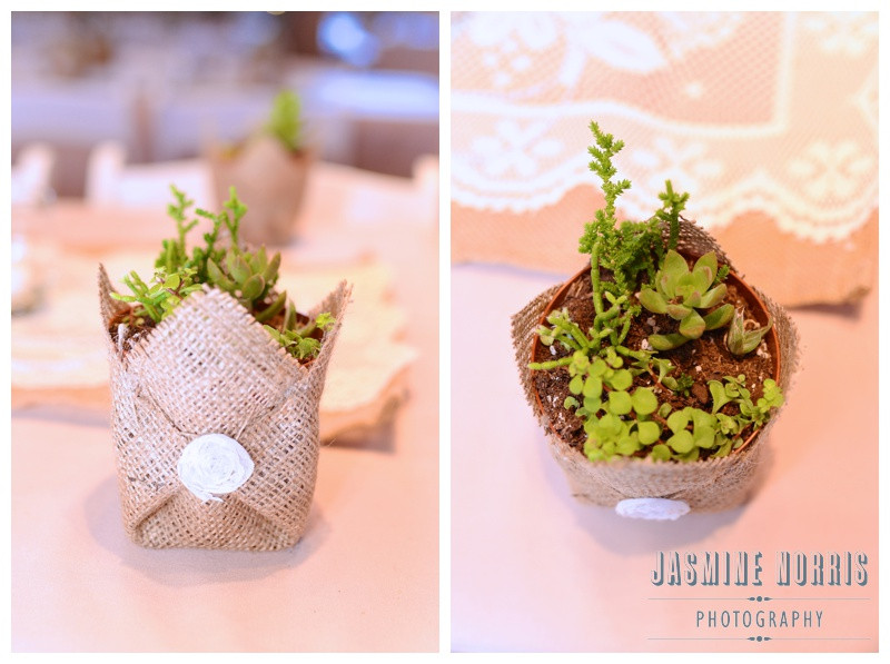 Best Wedding Favors For Your Guests Plants
