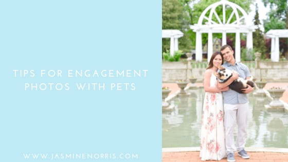 Tips For Engagement Photos With Pets Indiana Wedding Photographer Photography Indianapolis Lafayette