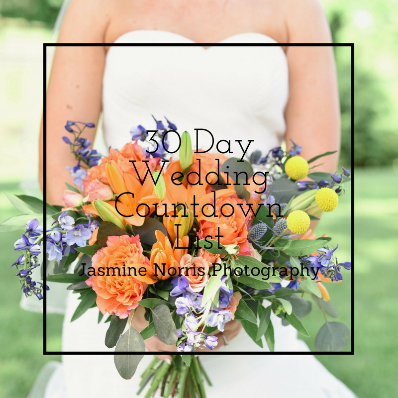 Wedding Countdown List Indiana Destination Wedding Photographer Photography