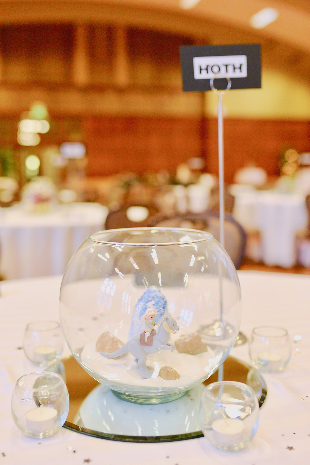 Star Wars Table Numbers Lafayette Indiana Wedding Photographer