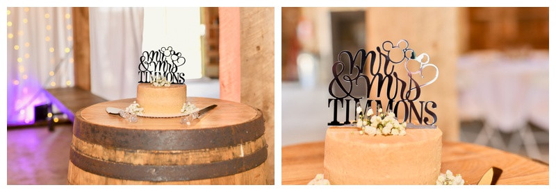 Small Disney Wedding Cake Inspiration Indiana Wedding Photographer