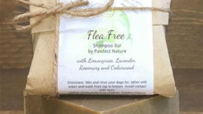 Flea Free Shampoo
