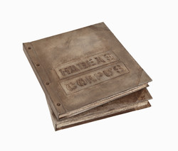 Livro objeto