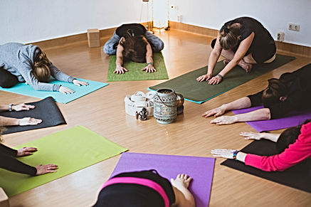 Bild Yoga Kurs, Hatha Yoga Gruppe
