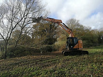 Tree Shearing Site Clearance Suffolk