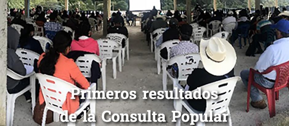 Primeros resultados de la Consulta Popular