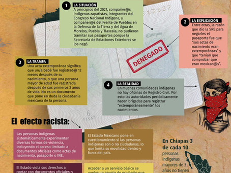 Infografía sobre como el racismo de Estado  se  manifiesta #EstadoRacista #LaGiraZapatistaVa