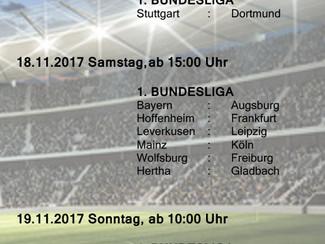Bundesliga und Champions League LIVE beim SVN
