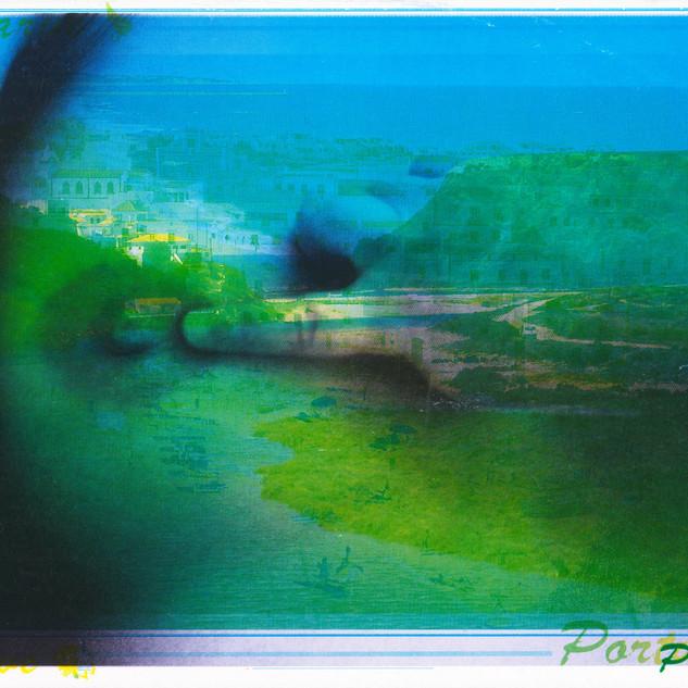 3. STOCK, 1988/2020  C-Print gerahmt 109 x 151,8 cm