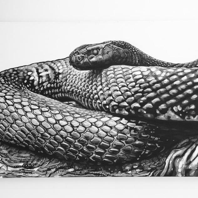 TAIPAN, 2017  black & white Acrylic on Canvas  Ca 120 x 200 cm signed