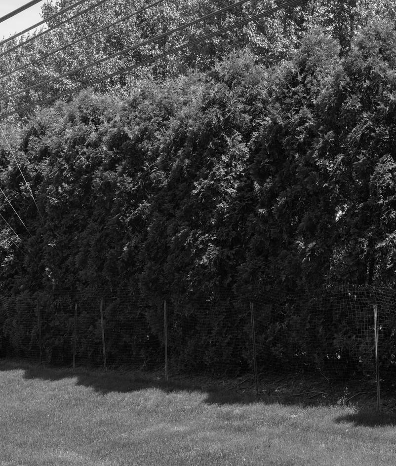 Untitled-8shoot3.jpg