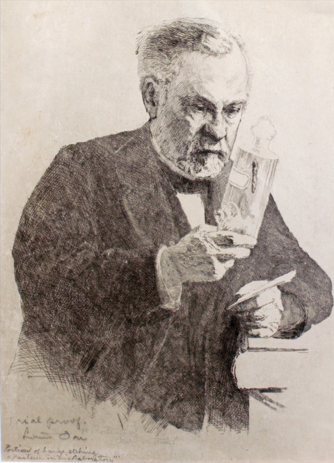 Trial Proof Etching of Pasteur's Face and Hands