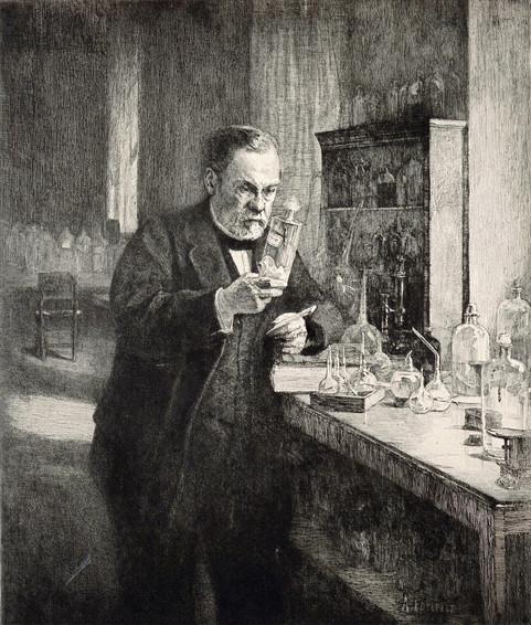 Final Etching for Louis Pasteur Centennial