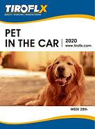 Pet in the car20190930-01.jpg
