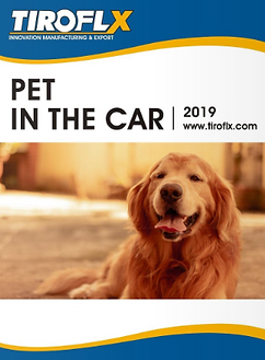 pets in thr car.PNG