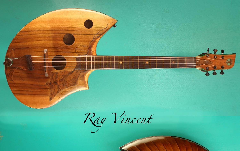 Acoustic guitar 2020
