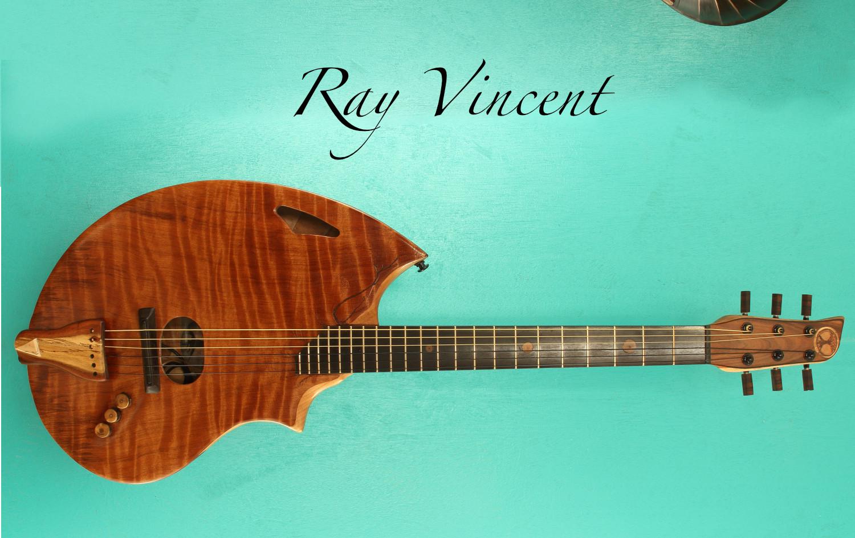 electrocoustic guitar 2020