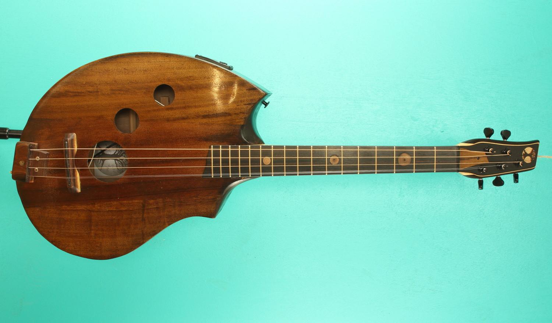 5 string guitar