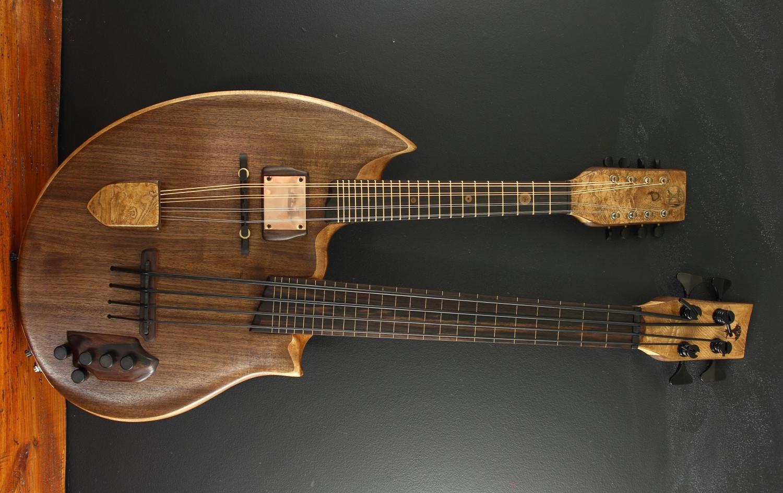 electric double neck bass/mando